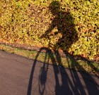 I Love Riding in the City – Thomas Connolley